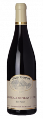 """Olivier Guyot """" Les Fuées"""" 2014"""