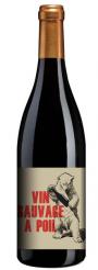 """Régnié Vin sauvage à poil """"Chateau de la terriere"""" 2016"""