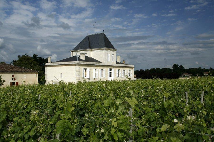 Bordeaux - Médoc - netvin - château brane cantenac