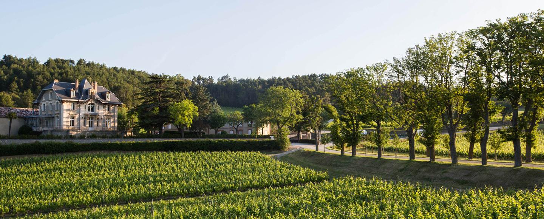 Domaine de Baron'Arques - AOC Limoux - Netvin.com