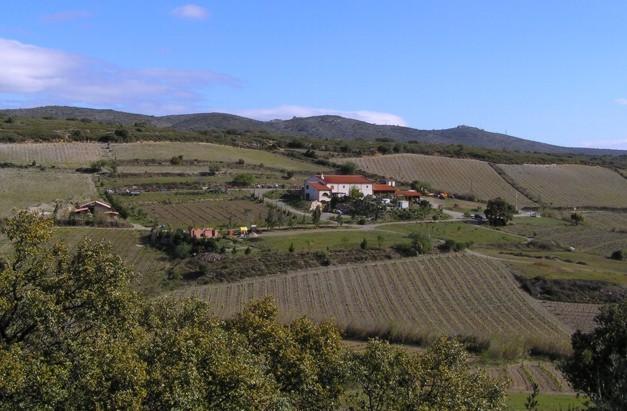 Domaine Gauby - Roussillon - Netvin.com