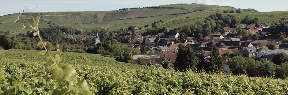 Domaine Franck Millet - Sancerre - Val de Loire