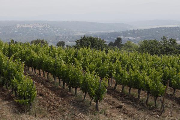Domaine du Deffends - Coteaux-Varois-en-Provence - Netvin.com