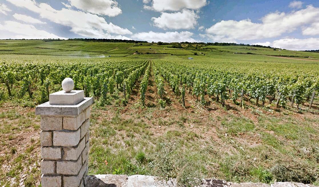 Domaine du Clos Frantin - Vosne Romanée - Netvin.com