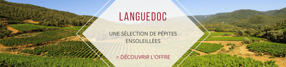 Nos coups de cœur des vins du Languedoc - Roussillon