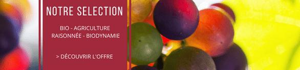 Découvrez nos vins bios